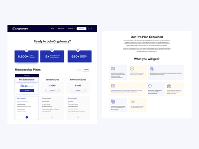 Cryptonary Membership Plans website design web design pricing pricing plans pricing plan membership blockchain cryptocurrency ui  ux design minimal typography ui userinterfacedesign