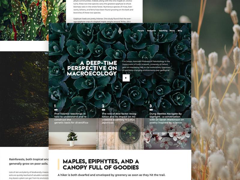 Plant Blog typography instagram behance website photography ui minimal clean design blogs landing page