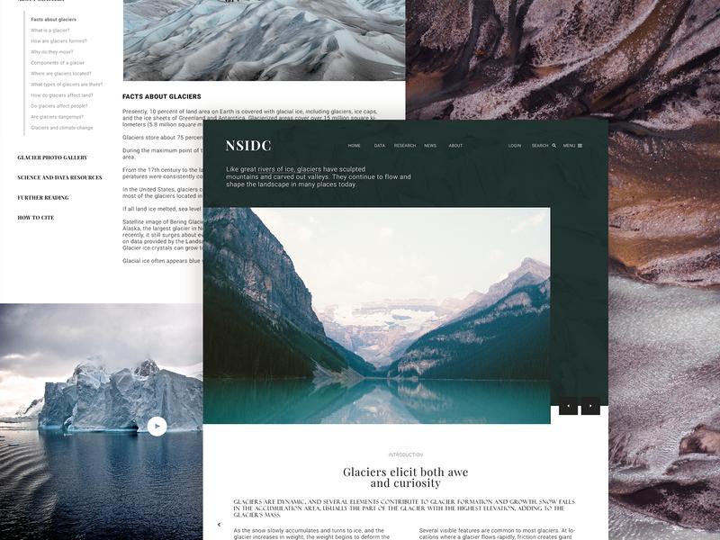 NSIDC layout instagram ux design behance typography ui minimal clean blogs landing page