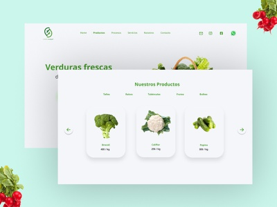 Vegetables shop webdesign uidesign ui  ux vegetables