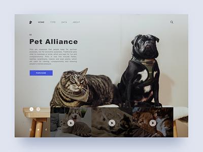 Pet Alliance sketch ui