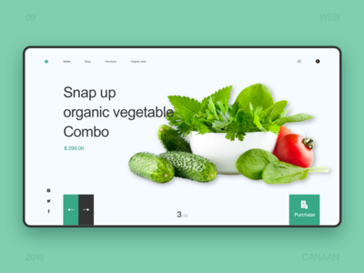 Vegetable shopping platform