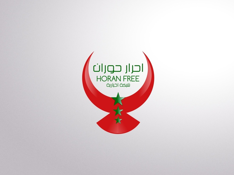 Syria News Network logo icon design vector freedome free flag star bird logo bird arab branding logo idea