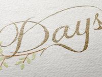 Dayslogomockup