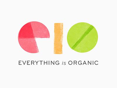 Everything is Organic fruit juice branding logo eio