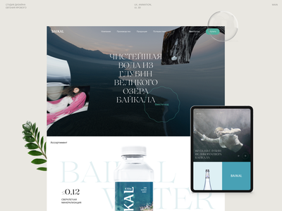 From the depths of the lake 🐠 concept typography brand webdesign behance design branding web ui ux