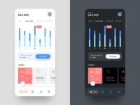 mobile Dashboard - Dark and Light Version