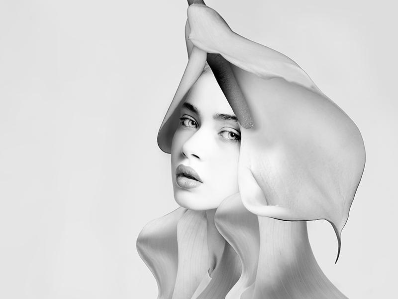 Hair Concept (3) composite design photography beauty hair