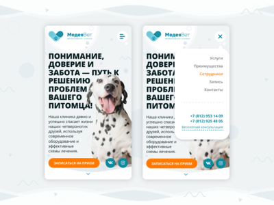 "Adaptive for landing page of the veterinary clinic ""MedeaVet"""