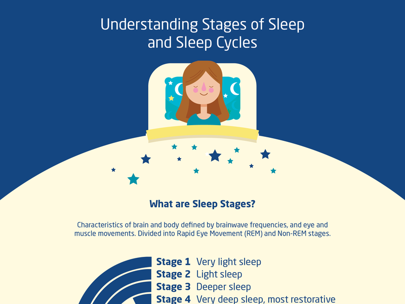 Infographic Stages Of Sleep And Sleep Cycles by Zameer
