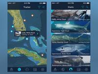 Shark Tracker, Map & List