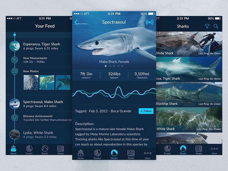 Shark Tracker - IOS App ios app shark tracking feed data dashboard