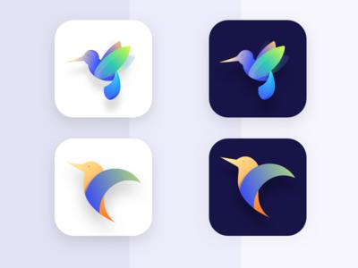 Icon exploration | humming bird