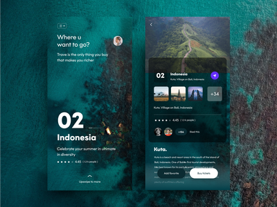 travel app screens website animation branding she web travel 2 nice100 dribbbble indonesia mobile ux vector logo typography iphone design sudhan illustration tracie ching travel
