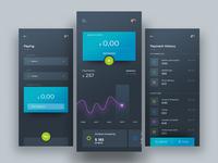 Online Payment App