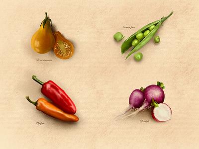 Vegetables vegetables graphic procreateapp procreate illustration