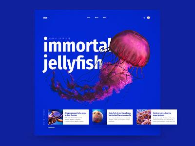 Square Grid Interface jellyfish blue deep slider cards grid interface ui