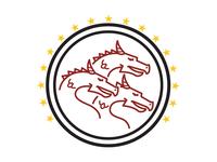 Dragonstone FC