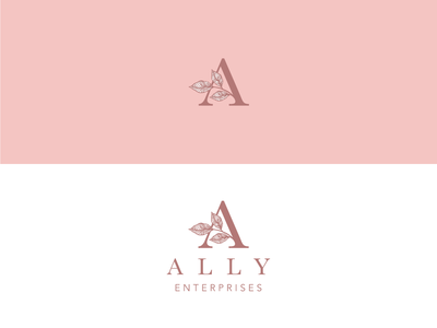 Ally Enterprises Consulting