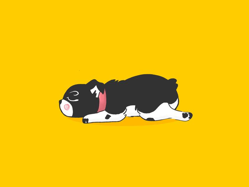 Dog illustration sleep pet illustration pet puppy french bulldog boston terrier vector illustration dog