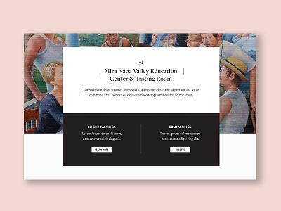 Mira Website branding winery webdesign website