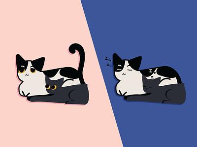 Ollie and Miss Kiwi pets cats cartoon illustrator vector illustration