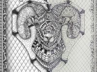 Ornate Big Horn Sheep Sketch