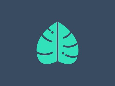 Monstera leaf leaf logo illustrator identity icon vector brandidentity graphicdesign logodesign illustration design logo design branding logo