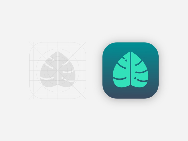 Monstera App Icon