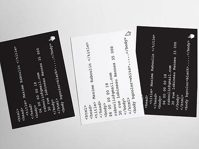 carte de visite  carte design france développeur computer informatique