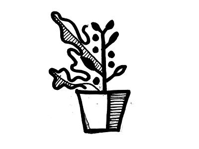 Office Plant illustration plant