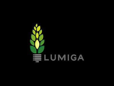 Lumiga environmental light lighting green energy