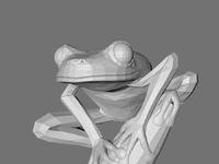 Frog making of