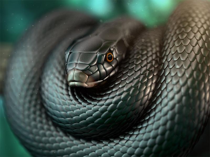 Black Mamba jungle wild animal cgi 3d rendering snake mamba black