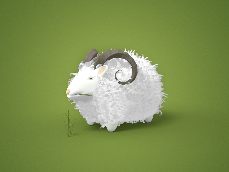 Sheep large