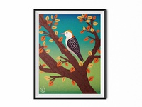 Woodpecker Wanderer