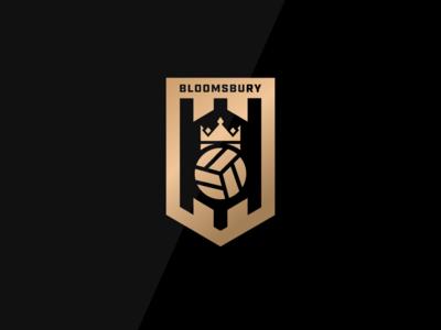 Bloomsbury Football Academy Badge