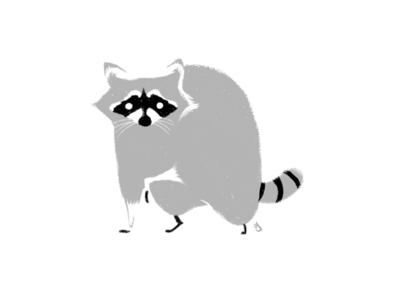 Raccoon woods woodland furries forest animals forest furry fur mammals mammal raccoons raccoon animal negative space hand drawn procreate