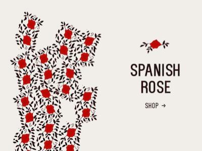 """Hand drawn"" Spanish Rose fashion advert"