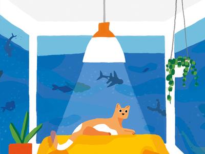 Daily Telegraph fish ocean bay window sofa houseplants house cat living room