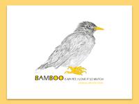 BAMBOO (animal protection)