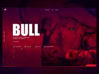 Bull Design Concept