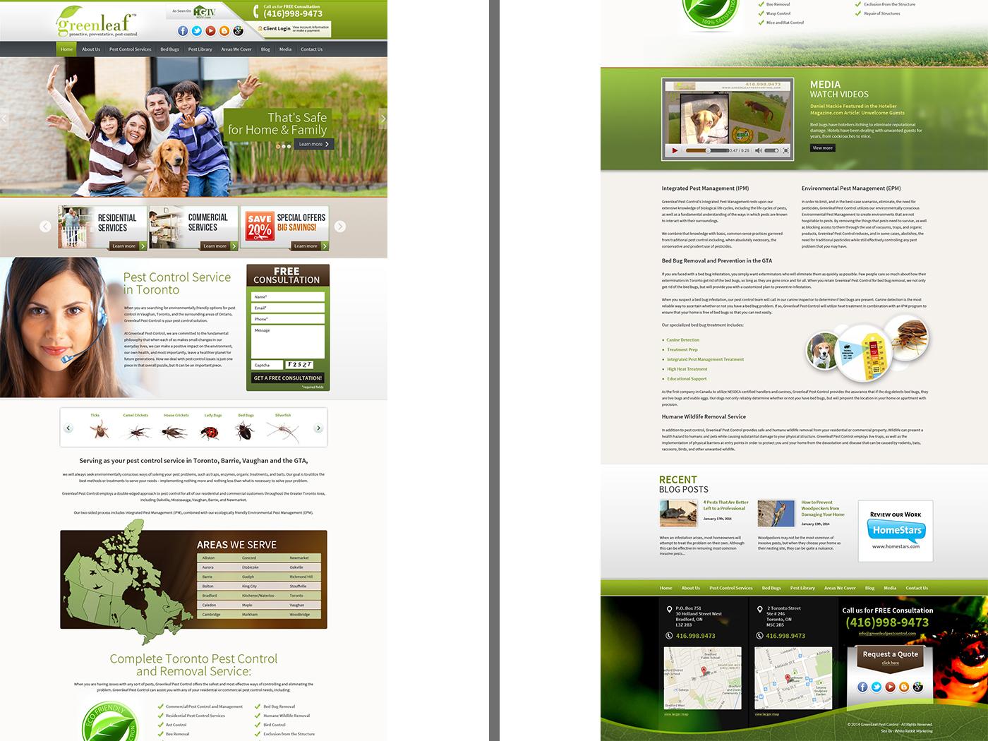 Green Leaf website layout design by Rajendra Singh on Dribbble
