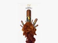 Davidoff Churchill Cigar