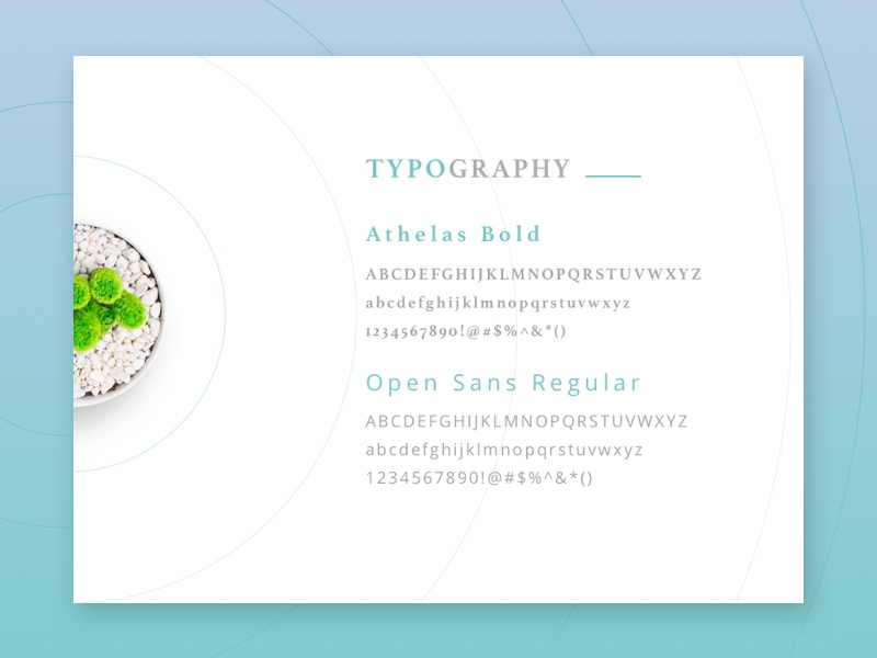 Dental Clinic web project ui-ux design clinic tooth teeth dental fonts plant typography circle blue green