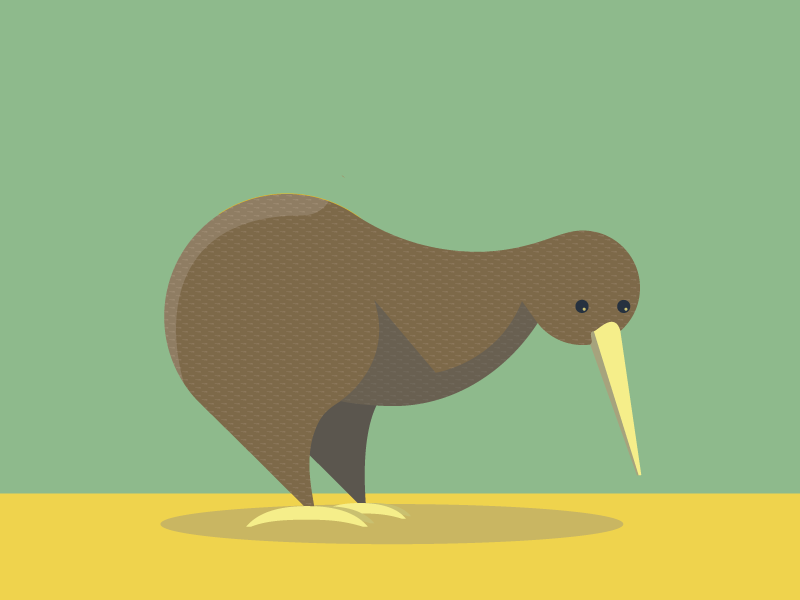 Kiwi illustration kiwi animals abc flat color simple
