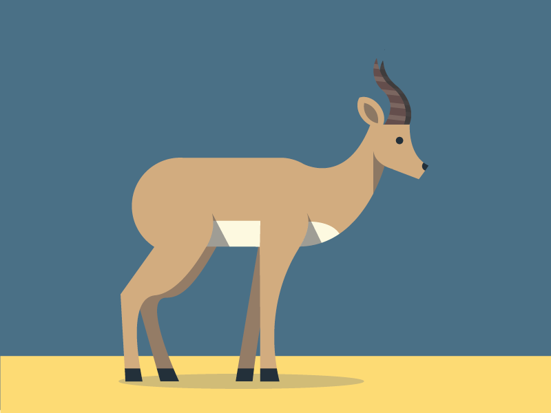 Antilope illustration antilope animals abc flat color simple pattern