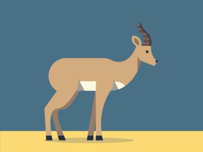 Antilope illustration antilope animals abc flat color simple pattern