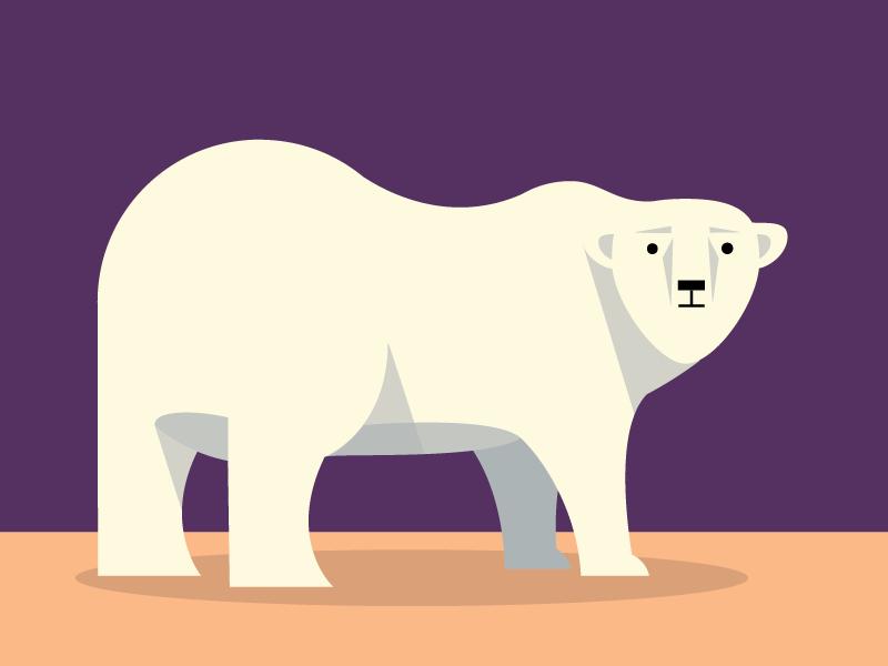 Bear illustration bear animals abc flat color simple