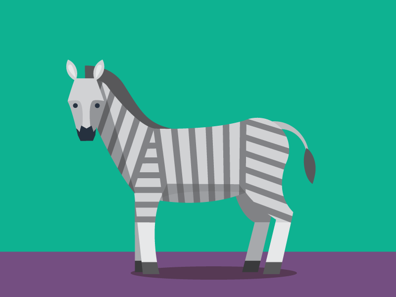 Zebra illustration zebra animals abc flat color simple pattern